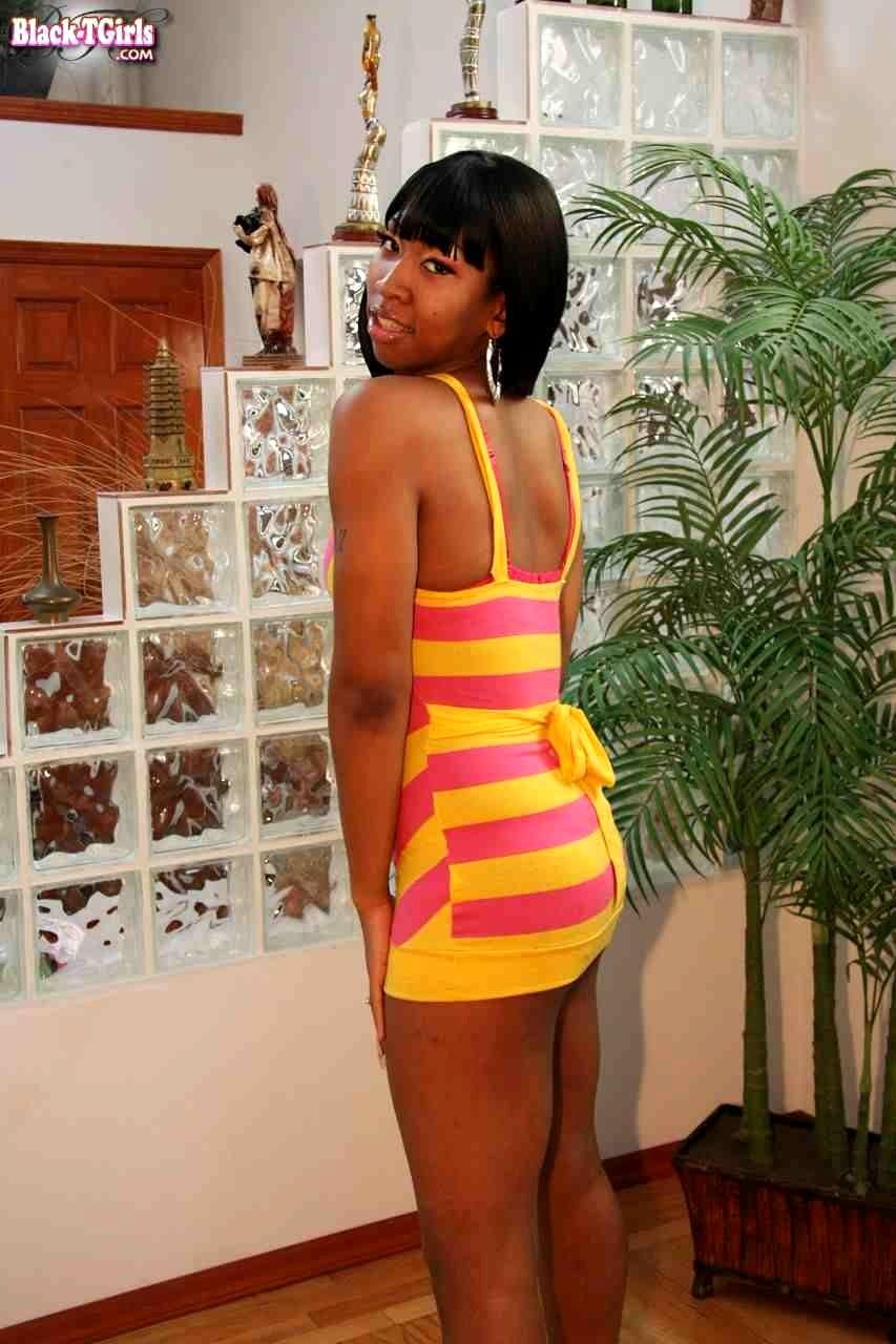 blacktgirls blacktgirls model warner black tgirl silver free